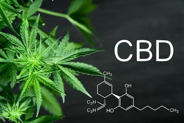 buying CBD Products