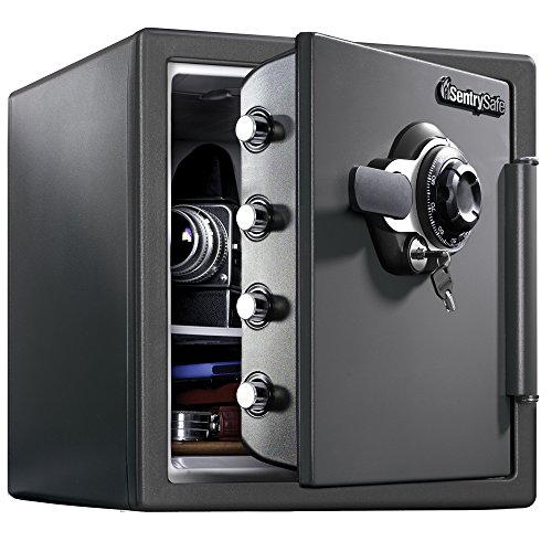 best fireproof and waterproof safe